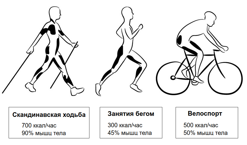 Hodba beg velosiped.png