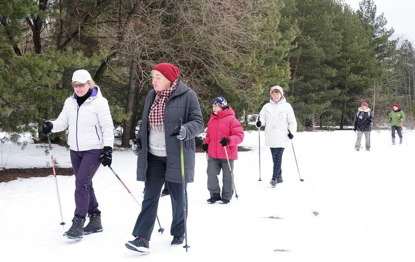 skandinavskaya hodba zimoi.jpg